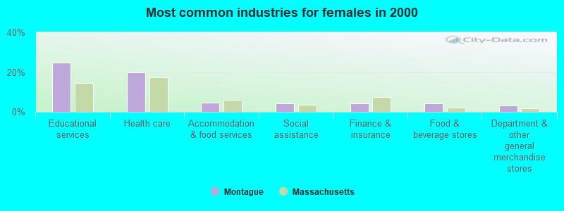 Montague, Massachusetts (MA 01351) profile: population, maps