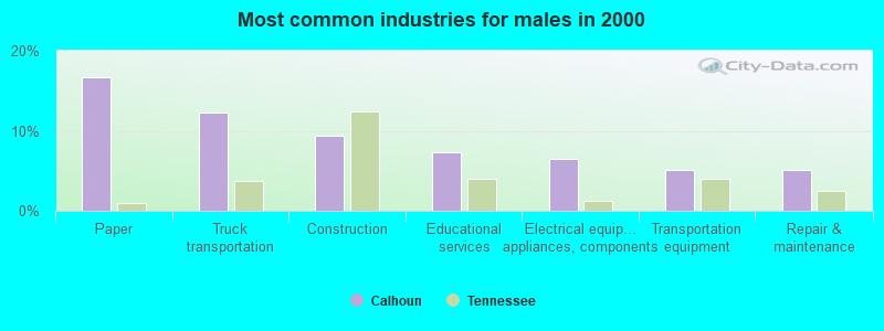 Calhoun, Tennessee (TN 37309) profile: population, maps