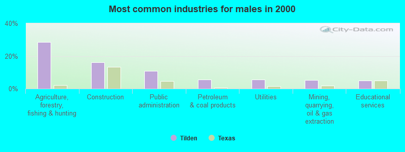 Tilden, Texas (TX 78072) profile: population, maps, real