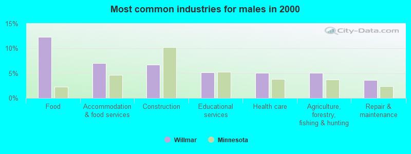 Willmar, Minnesota (MN 56201) profile: population, maps