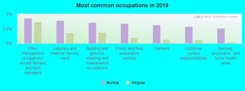 Most common occupations in 2017
