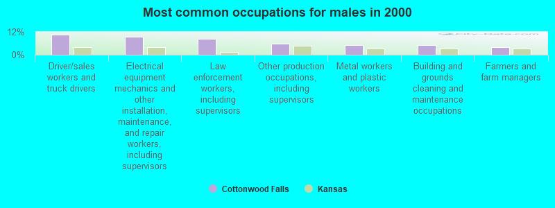 Cottonwood Falls, Kansas (KS 66845) profile: population