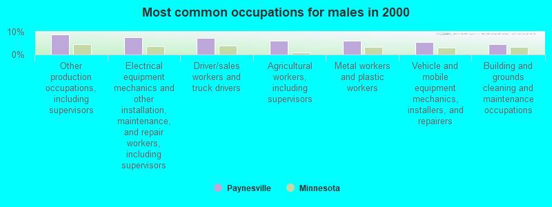 Paynesville, Minnesota (MN 56362) profile: population, maps