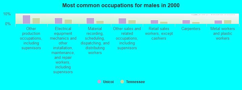 Unicoi, Tennessee (TN 37692) profile: population, maps, real