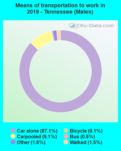 Means of transportation to work in 2016 - Tennessee (Males)