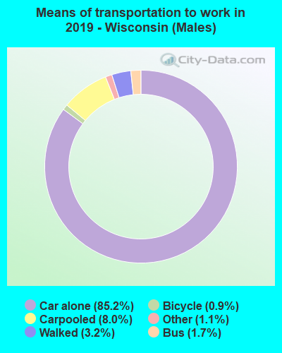 Means of transportation to work in 2016 - Wisconsin (Males)