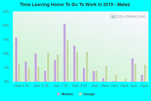 Work and Jobs in Moultrie, Georgia (GA) Detailed Stats ...