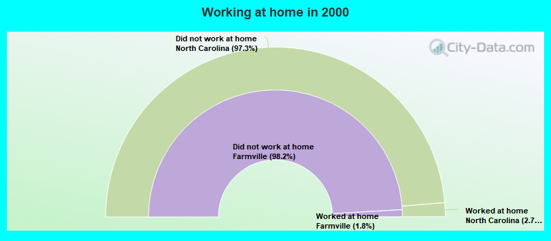 Working at home in 2000