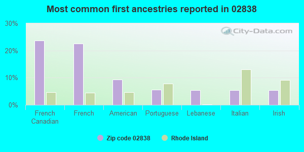 Most common first ancestries reported in 02838