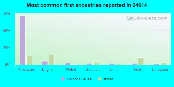Most common first ancestries reported in 04614