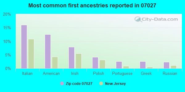 Most common first ancestries reported in 07027