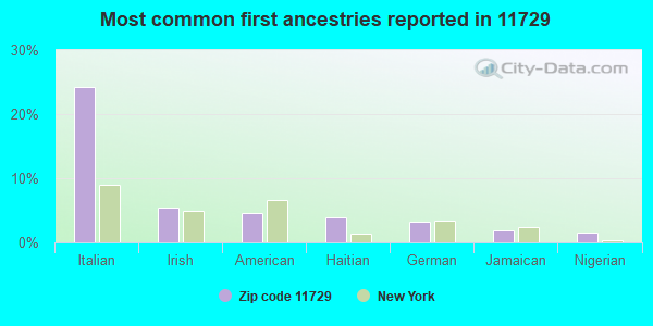 Most common first ancestries reported in 11729