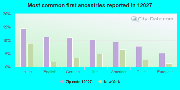 Most common first ancestries reported in 12027