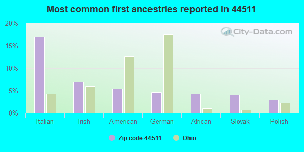Most common first ancestries reported in 44511