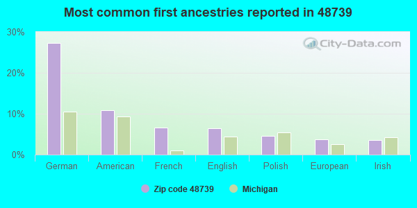 Most common first ancestries reported in 48739