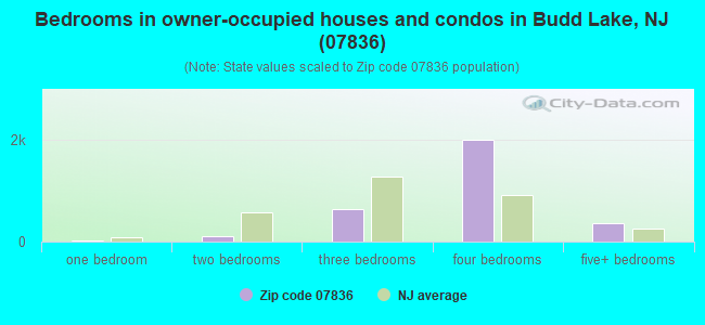 Bedrooms in owner-occupied houses and condos in Budd Lake, NJ (07836)