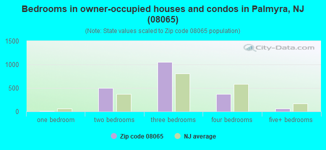Bedrooms in owner-occupied houses and condos in Palmyra, NJ (08065)