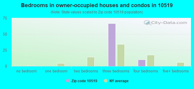Bedrooms in owner-occupied houses and condos in 10519
