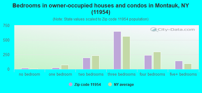 Bedrooms in owner-occupied houses and condos in Montauk, NY (11954)