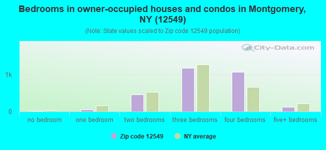 Bedrooms in owner-occupied houses and condos in Montgomery, NY (12549)