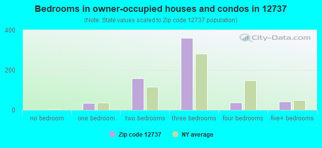 Bedrooms in owner-occupied houses and condos in 12737