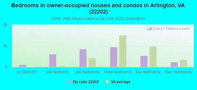 Bedrooms in owner-occupied houses and condos in Arlington, VA (22202)