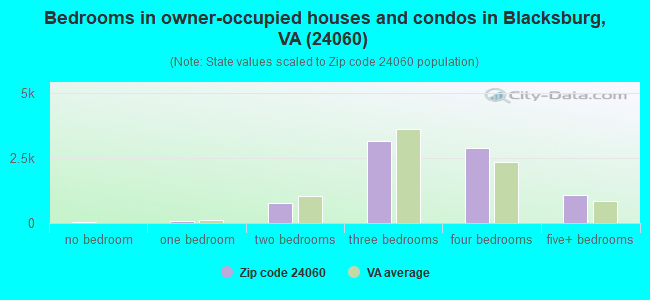 Bedrooms in owner-occupied houses and condos in Blacksburg, VA (24060)