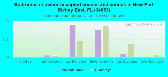 Bedrooms in owner-occupied houses and condos in New Port Richey East, FL (34653)