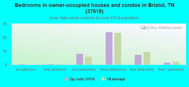Bedrooms in owner-occupied houses and condos in Bristol, TN (37618)