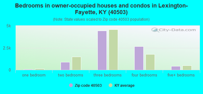 Bedrooms in owner-occupied houses and condos in Lexington-Fayette, KY (40503)