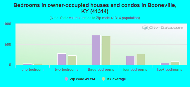 Bedrooms in owner-occupied houses and condos in Booneville, KY (41314)