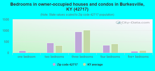 Bedrooms in owner-occupied houses and condos in Burkesville, KY (42717)