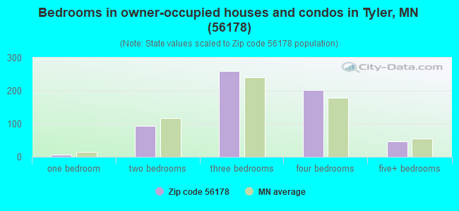 Bedrooms in owner-occupied houses and condos in Tyler, MN (56178)
