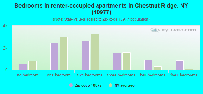 Bedrooms in renter-occupied apartments in Chestnut Ridge, NY (10977)