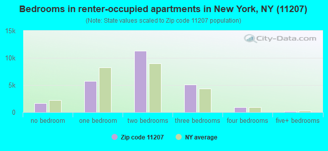 Bedrooms in renter-occupied apartments in New York, NY (11207)