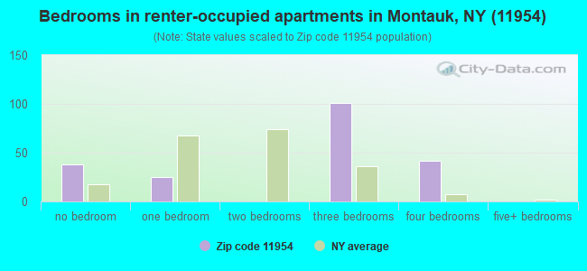 Bedrooms in renter-occupied apartments in Montauk, NY (11954)