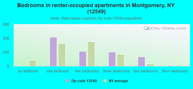 Bedrooms in renter-occupied apartments in Montgomery, NY (12549)