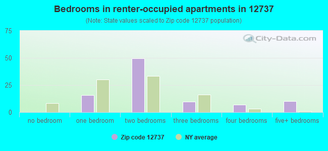 Bedrooms in renter-occupied apartments in 12737