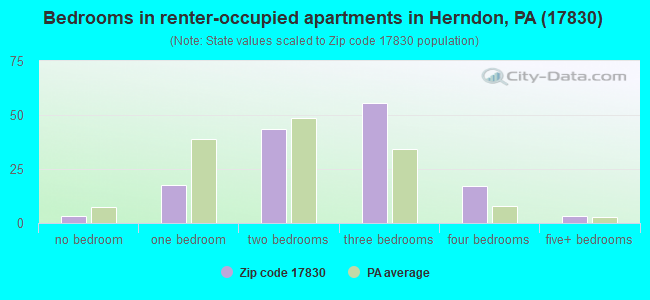 Bedrooms in renter-occupied apartments in Herndon, PA (17830)