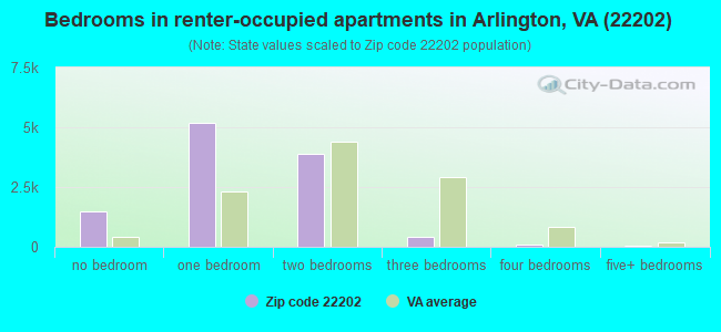 Bedrooms in renter-occupied apartments in Arlington, VA (22202)