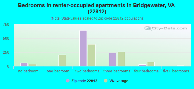 Bedrooms in renter-occupied apartments in Bridgewater, VA (22812)