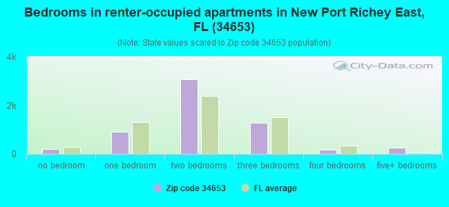 Bedrooms in renter-occupied apartments in New Port Richey East, FL (34653)