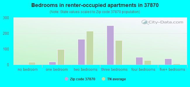 Bedrooms in renter-occupied apartments in 37870