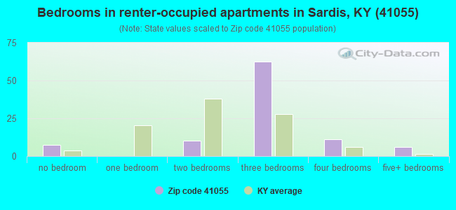 Bedrooms in renter-occupied apartments in Sardis, KY (41055)