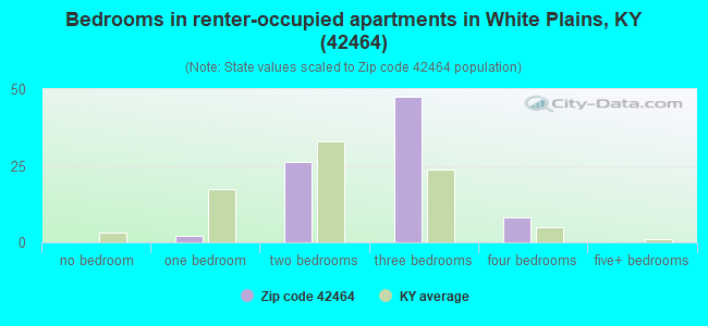 Bedrooms in renter-occupied apartments in White Plains, KY (42464)