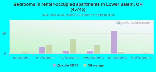 Bedrooms in renter-occupied apartments in Lower Salem, OH (45745)