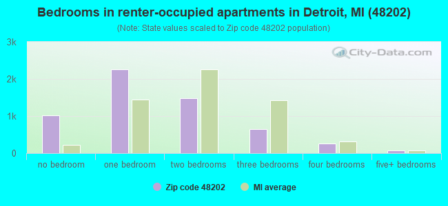 Bedrooms in renter-occupied apartments in Detroit, MI (48202)