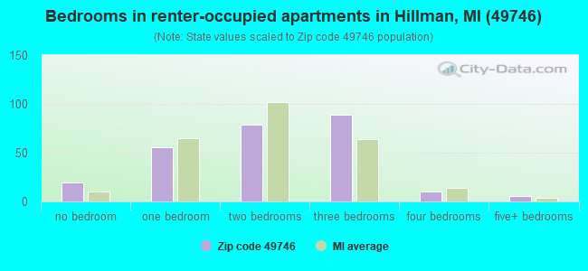 Bedrooms in renter-occupied apartments in Hillman, MI (49746)