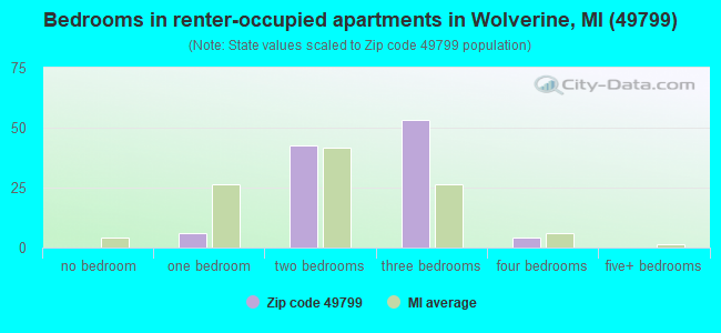 Bedrooms in renter-occupied apartments in Wolverine, MI (49799)
