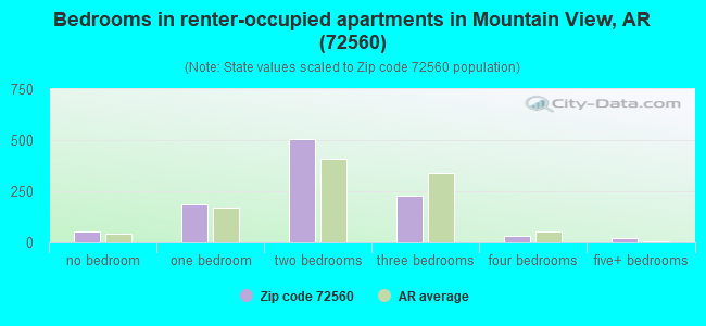 Bedrooms in renter-occupied apartments in Mountain View, AR (72560)